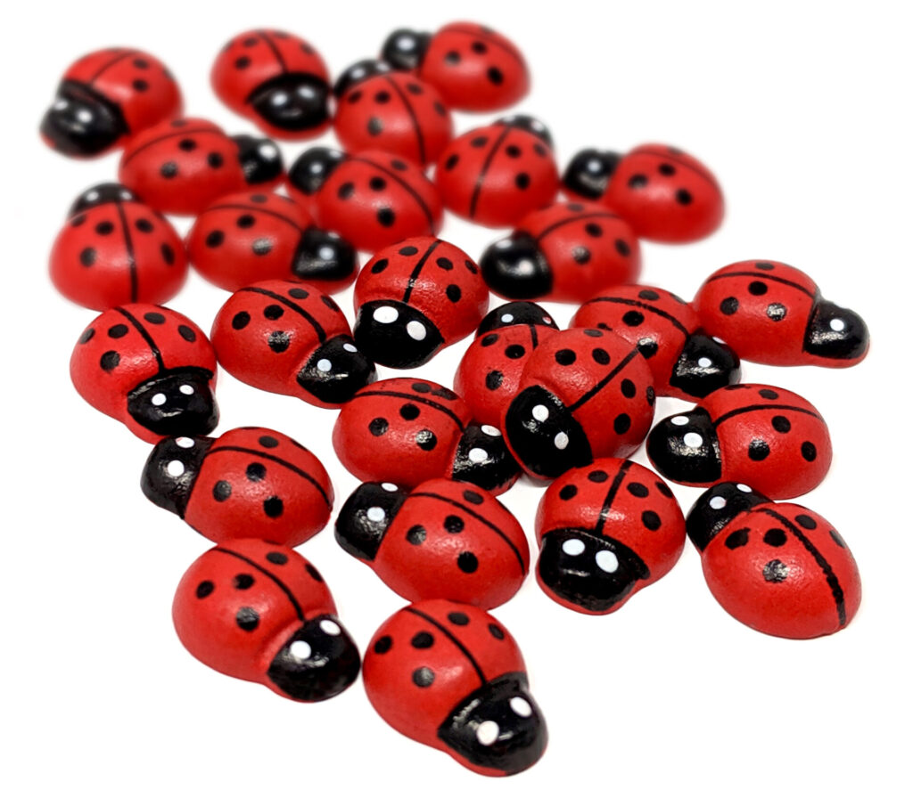 ladybird currency